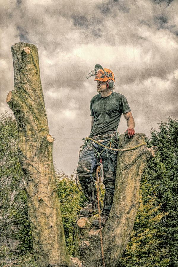 Resting Tree Surgeon by Roy Pedersen