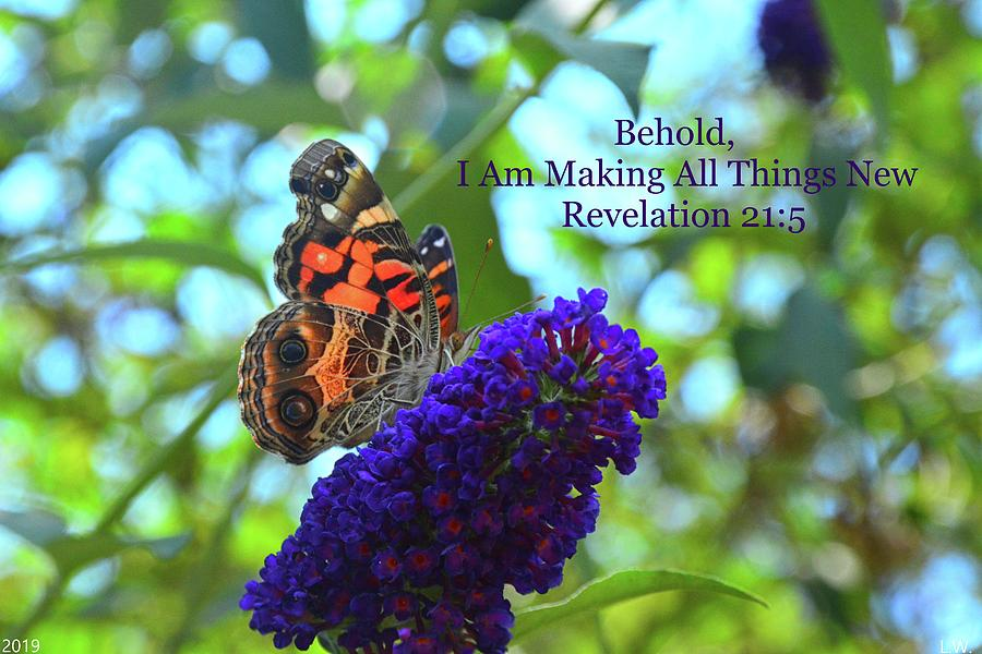 Revelation 21 5 Admiral Butterfly by Lisa Wooten