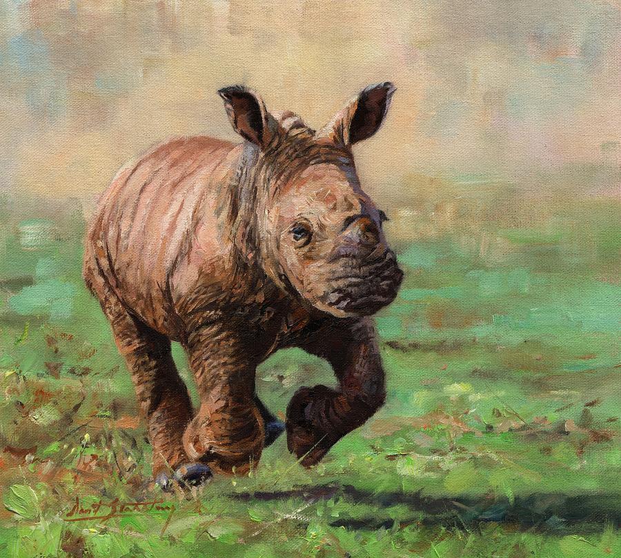 Rhino Calf by David Stribbling