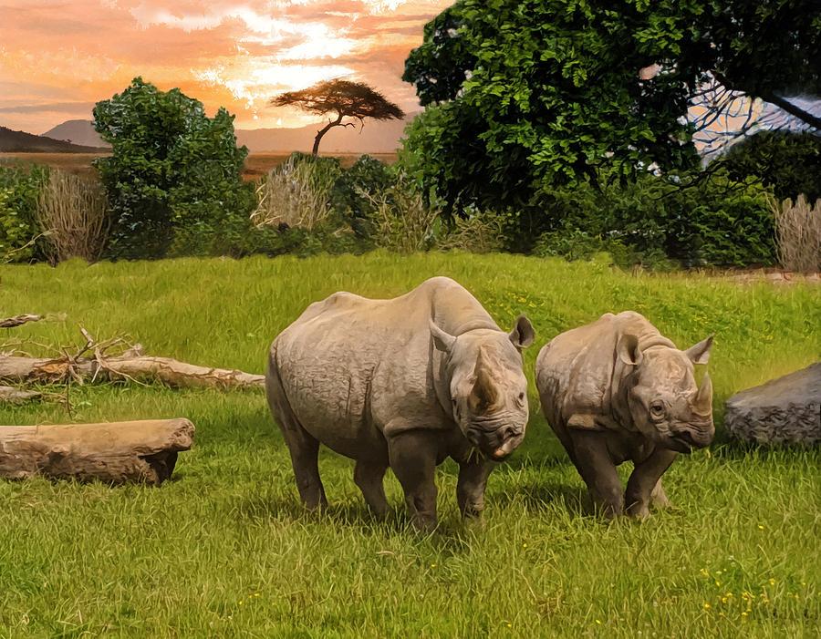 Rhinoceroses In Africa  by Sandi OReilly