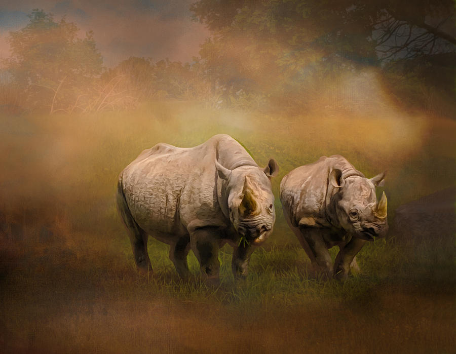 Rhinoceroses Out Of Africa by Sandi OReilly