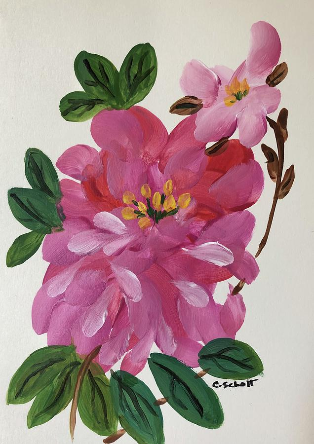 Rhododendron by Christina Schott