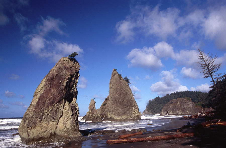 Rialto Beach Photograph by Mark Newman