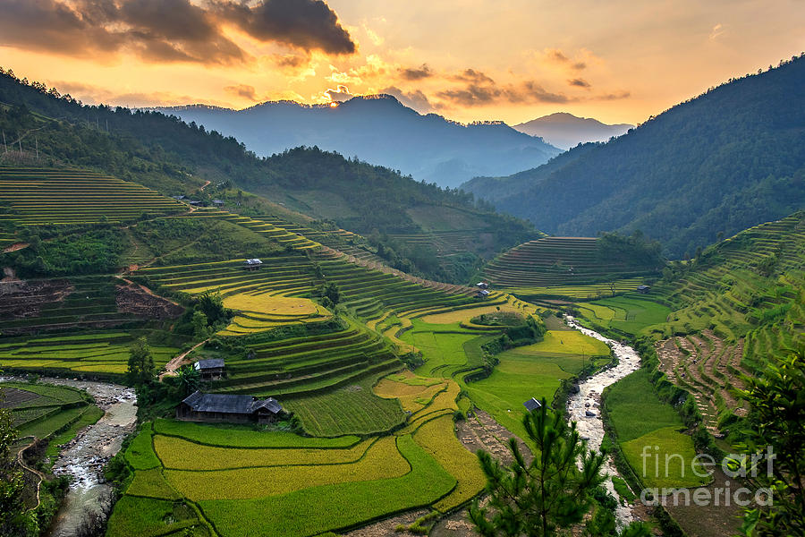 Sunshine Photograph - Rice Field On Terraces Panoramic by Cw Pix