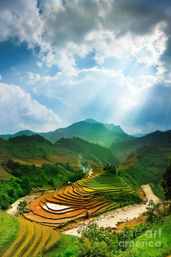 Japan Photograph - Rice Fields On Terraced Of Mu Cang by John Bill
