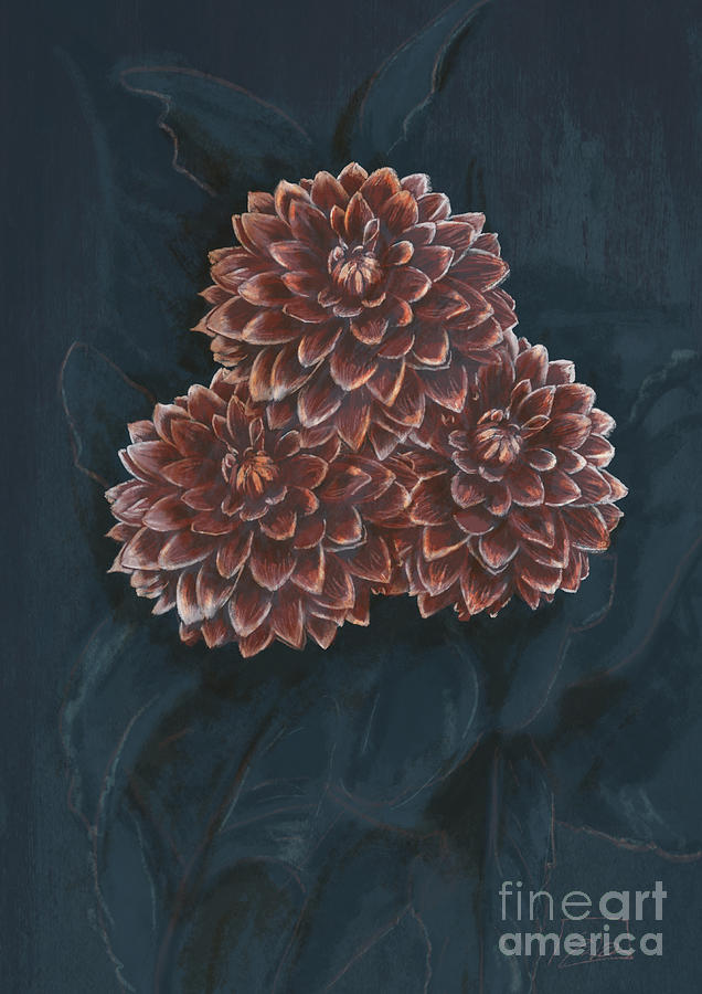 Rich Blossomed Dahlias  by Lidija Ivanek - SiLa