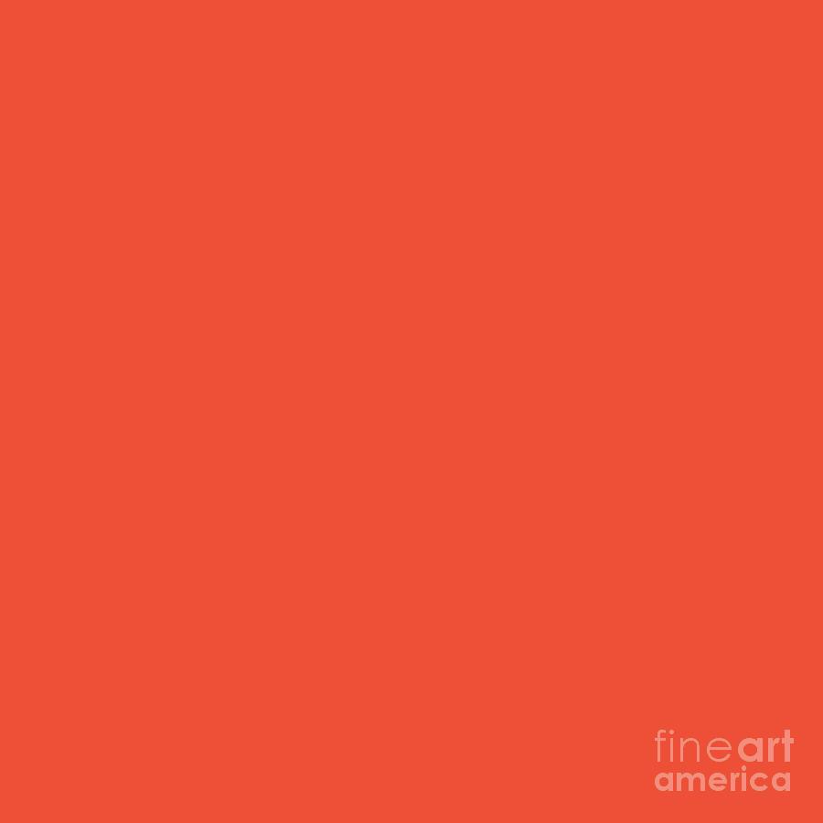 Rich Orange by Cheryl McClure