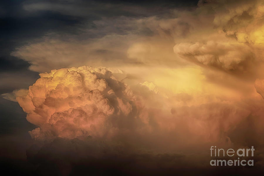 Ride for the Sunset by Natural Abstract Photography