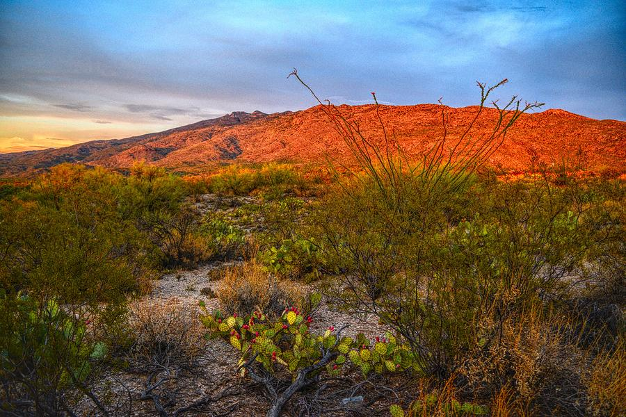 Rincon Mountains at Sunset, Tucson, Arizona by Chance Kafka