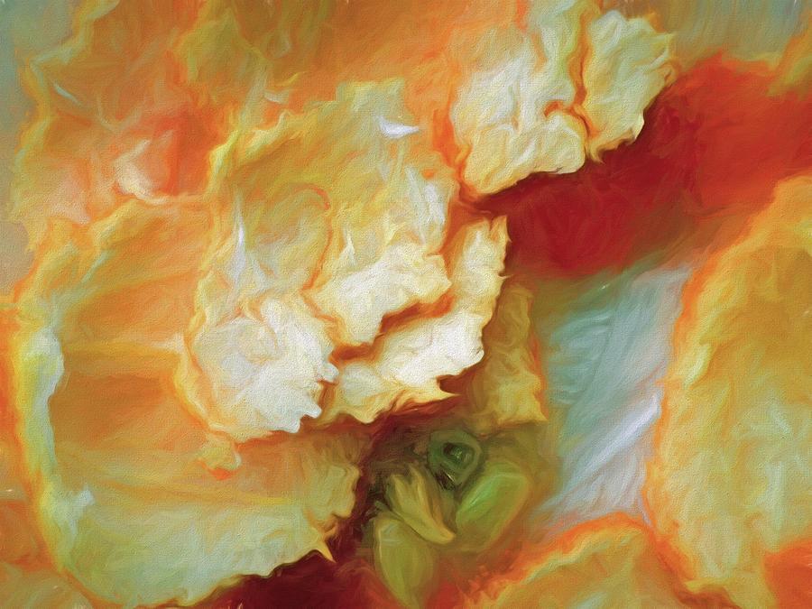 Rinds Like Flowers by Lynda Lehmann