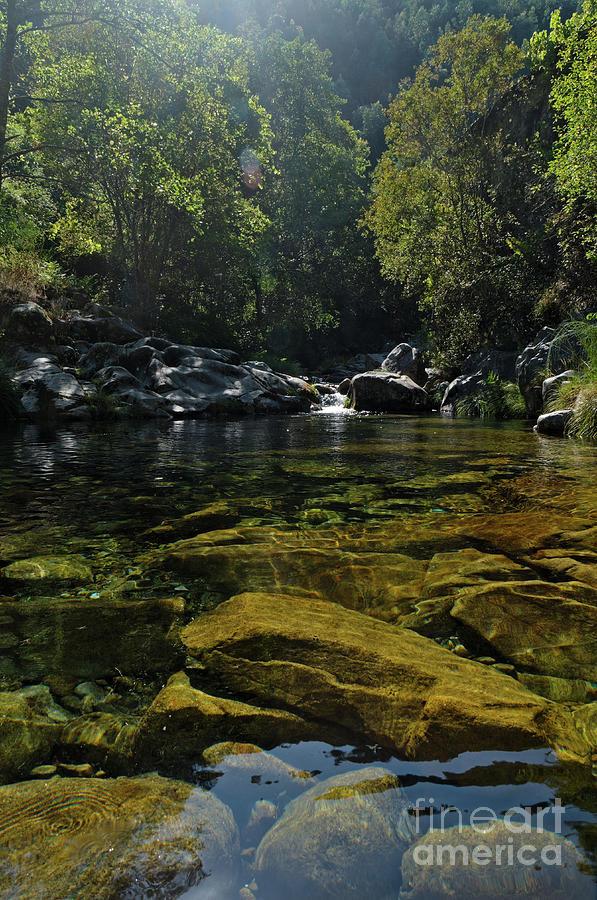 River Photograph - Rio Da Gralheira And Rocks by Angelo DeVal