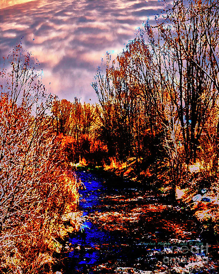 Rio Taos Bosque V by Charles Muhle
