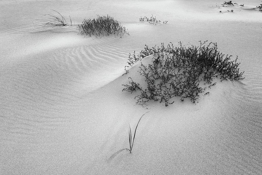 Ripples, Crane Beach Ipswich Ma. by Michael Hubley