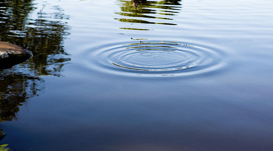 Ripples On A Pond Photograph by Rapideye