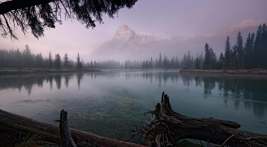 Rising From The Fog by Dan Jurak