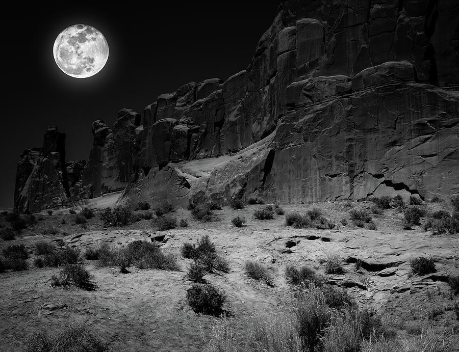 Rising Moon by Robert Blandy Jr