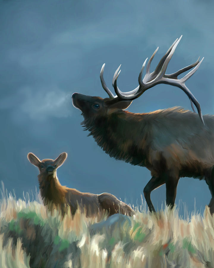 Rites of Fall- Elk by Mark Miller