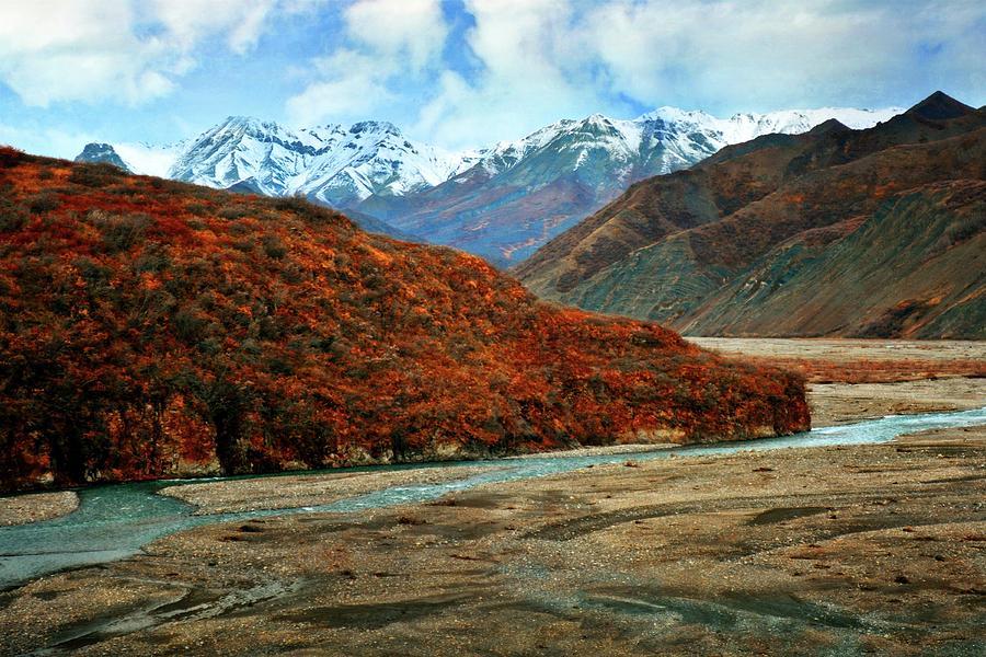 River At Denali by Marty Koch