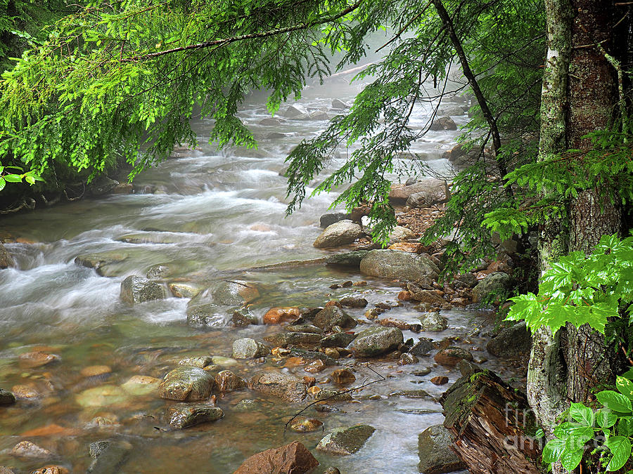 River Creek Photography Photograph