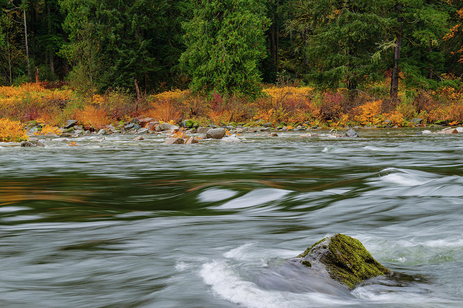 River in Central Cascade by Michael Lee