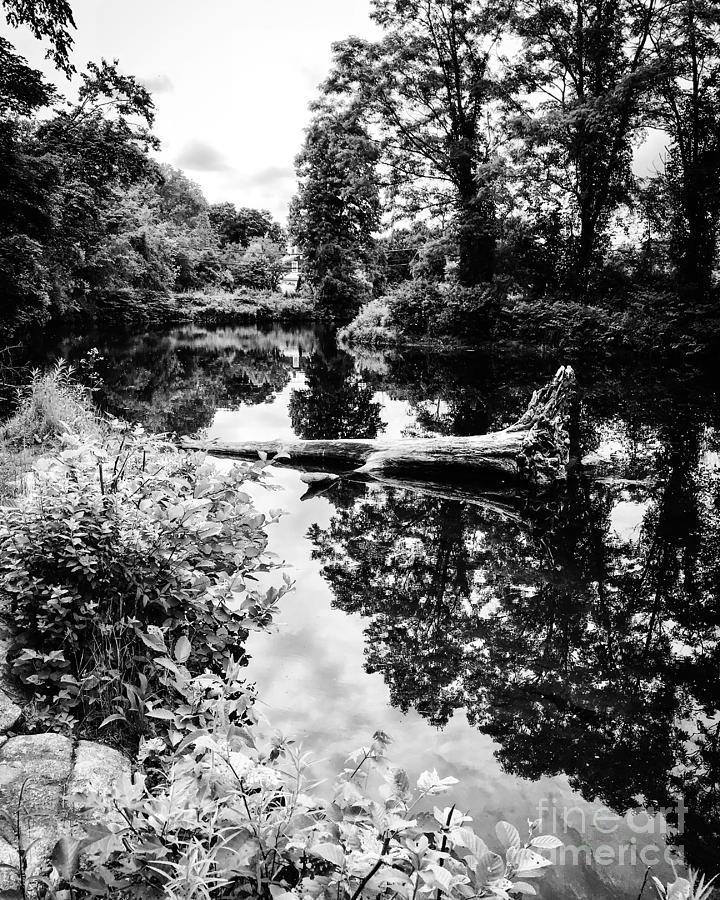 River Reflections Photograph by JMerrickMedia