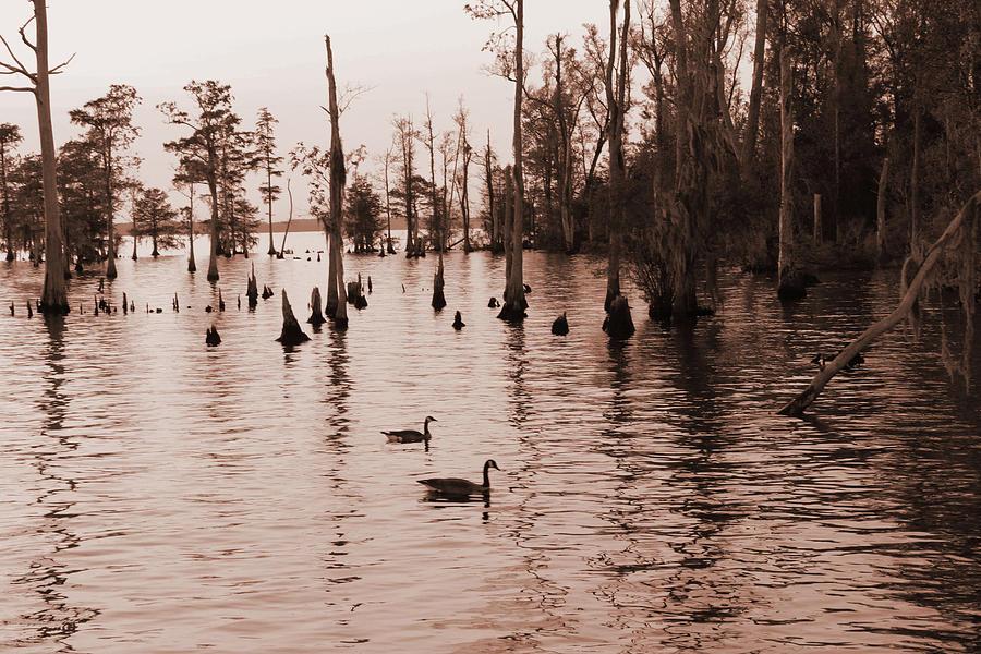 River Scene Photograph