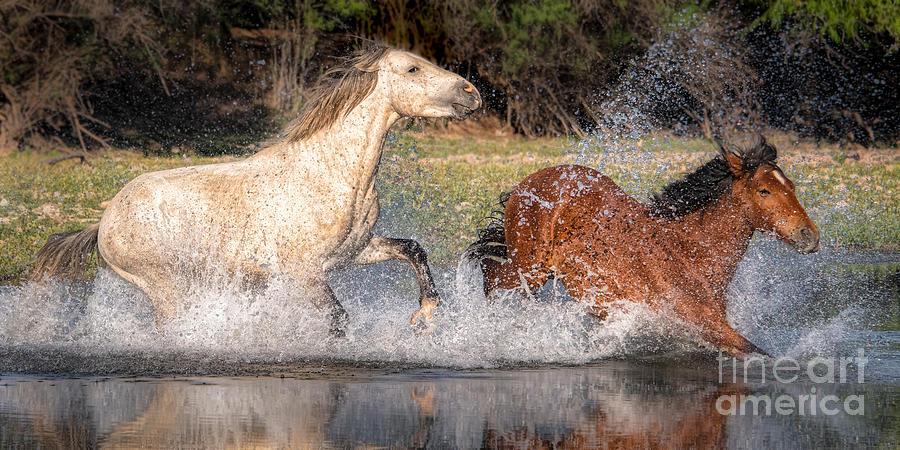 River Splish Splashing  by Lisa Manifold