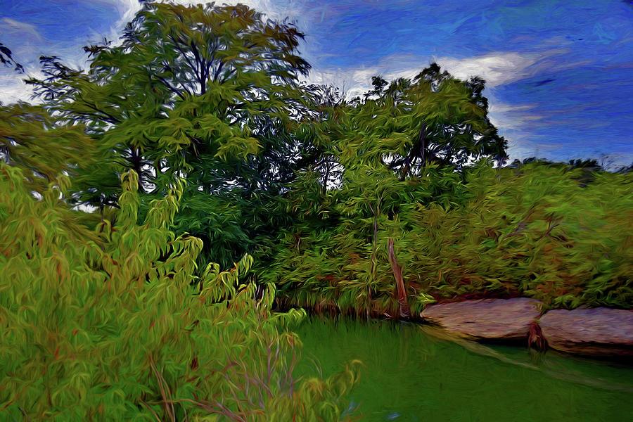 River Vista 81719 Mixed Media