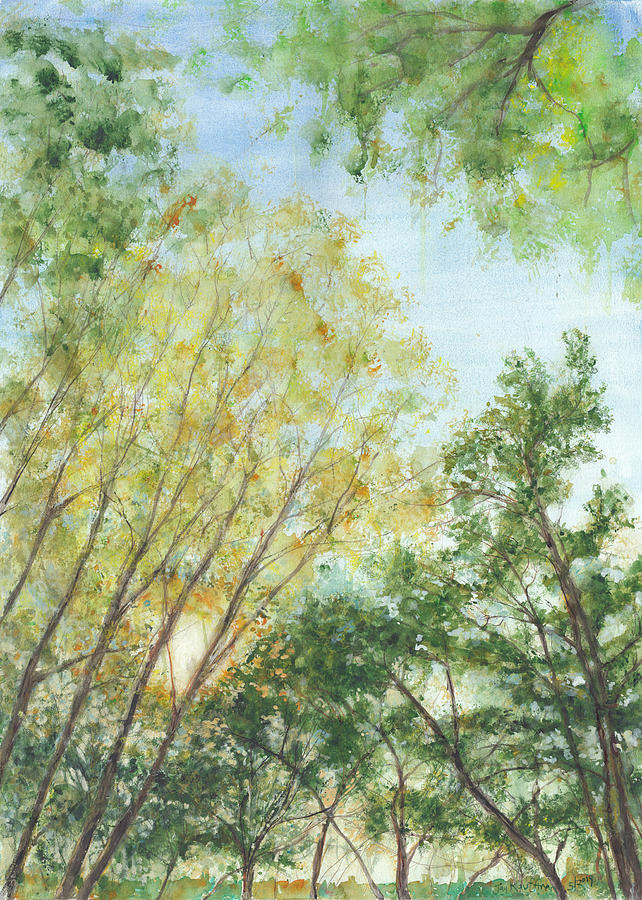 Watercolor Painting - Riverside Park Trees 1 by Jay Kauffman
