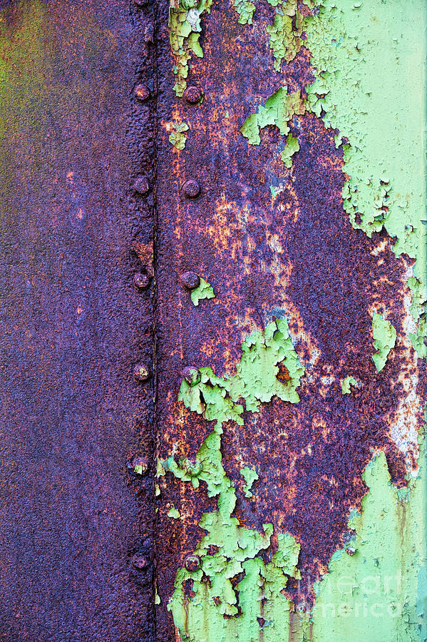 Rivets Photograph - Rivets Rust And Paint by Tim Gainey