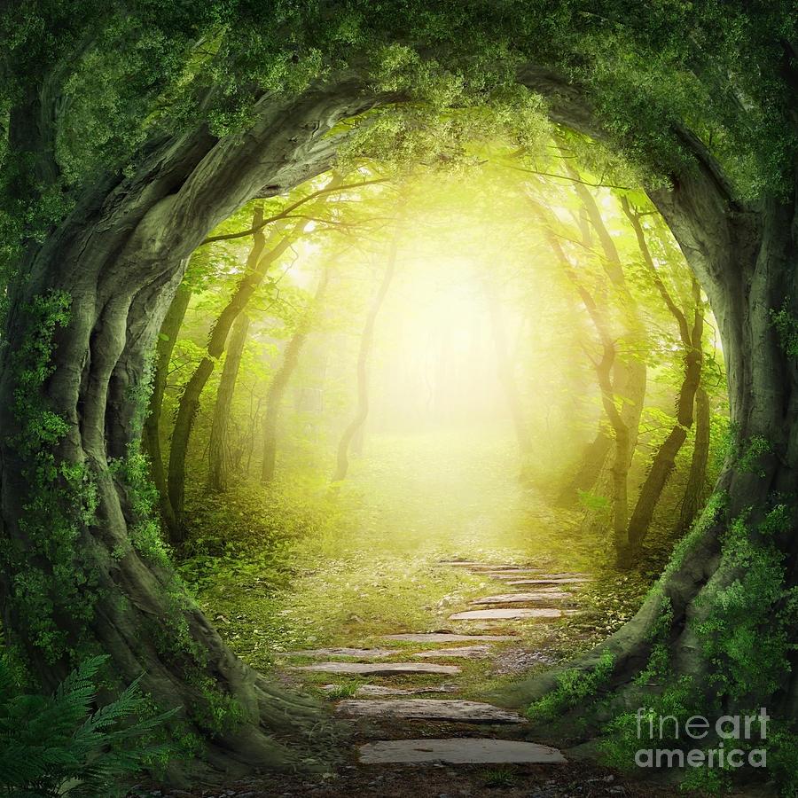Magic Photograph - Road In Magic Dark Forest by Elena Schweitzer