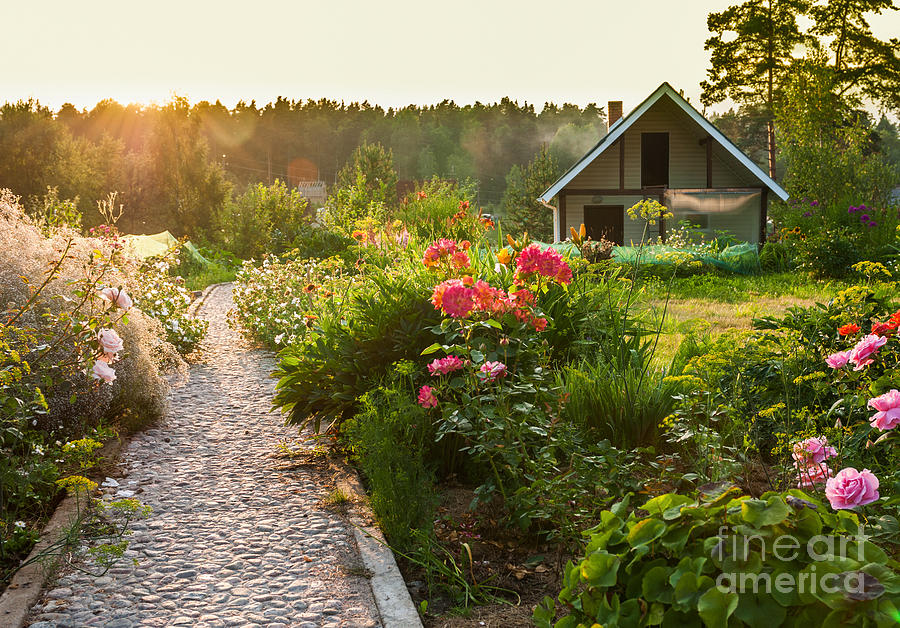 Flora Photograph - Road In The Beautiful Garden by Scorpp