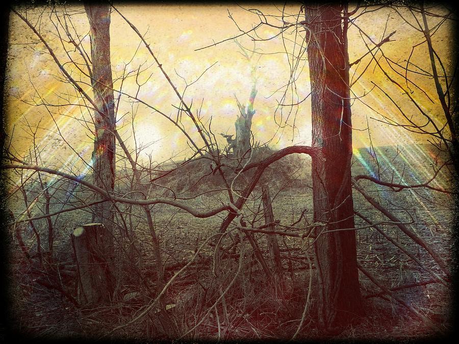 Road Side View by Michael L Kimble