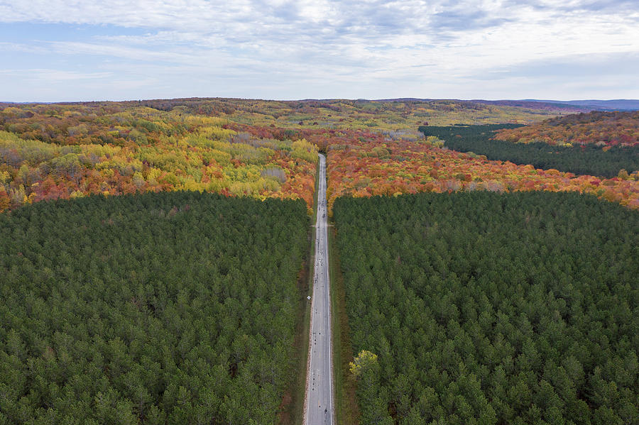 Road through Michigan Autumn  by John McGraw