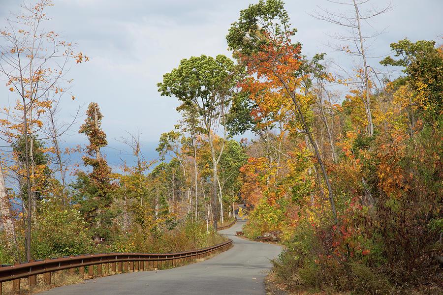 Road Thru Changing Seasons by Karol Livote