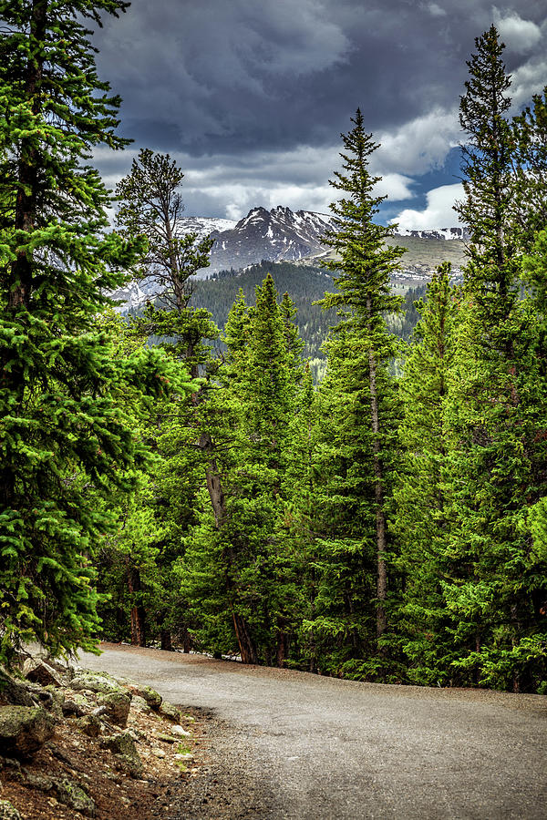 Road to Echo Lake, Colorado by Jeanette Fellows