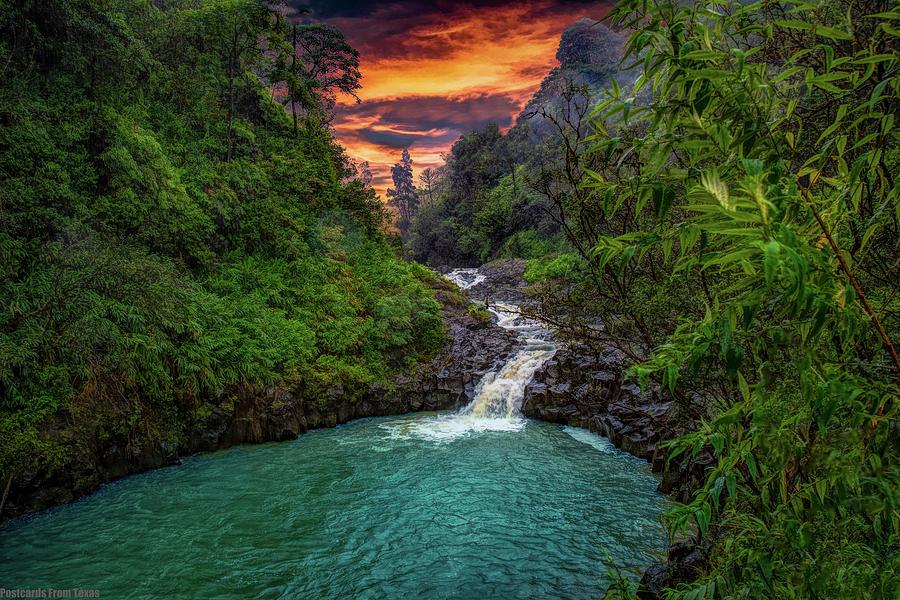 Road to Hana, HI by Gaylon Yancy