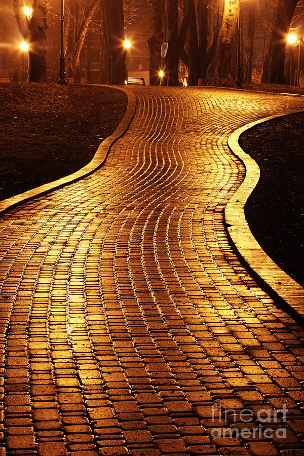 Ukrainian Photograph - Road To Mariinsky Park At Night In by Taras Verkhovynets