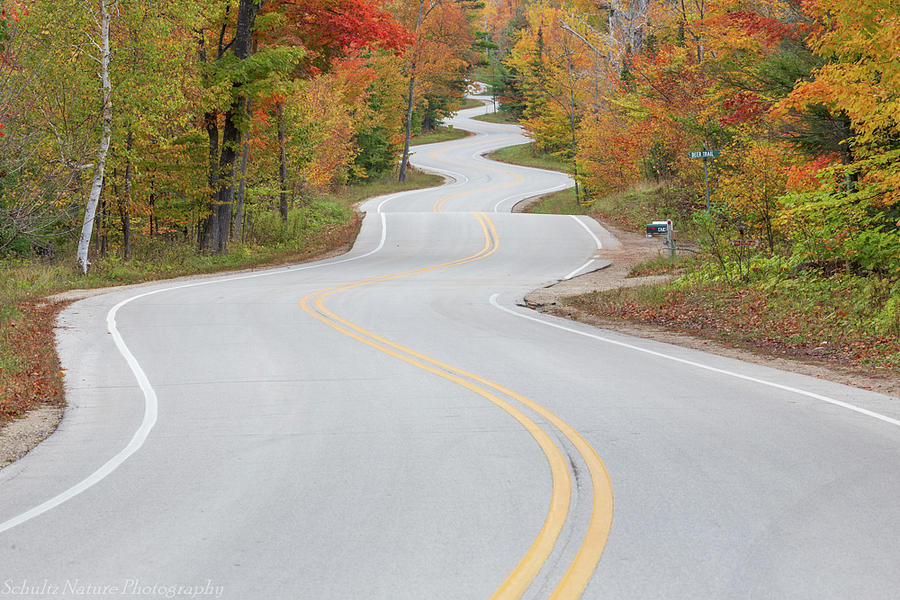 Road to Northport by Paul Schultz