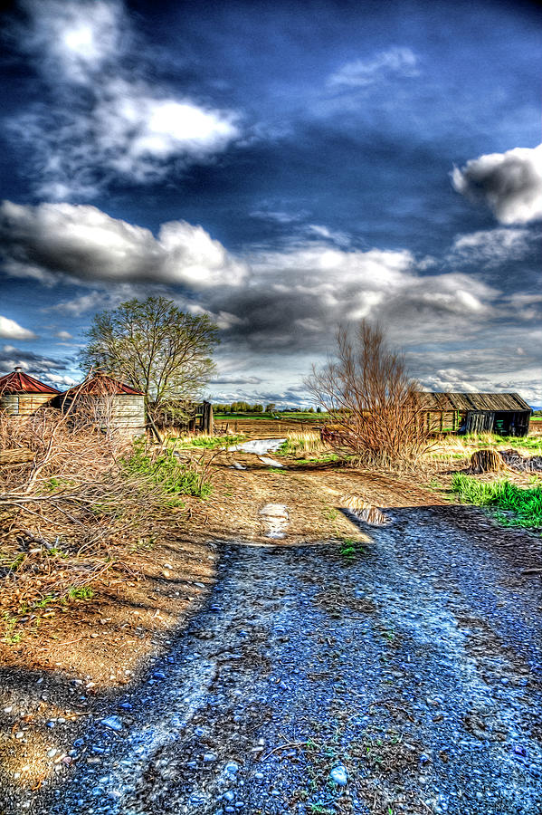 Country Photograph - Road To The Fields by Randy Waln