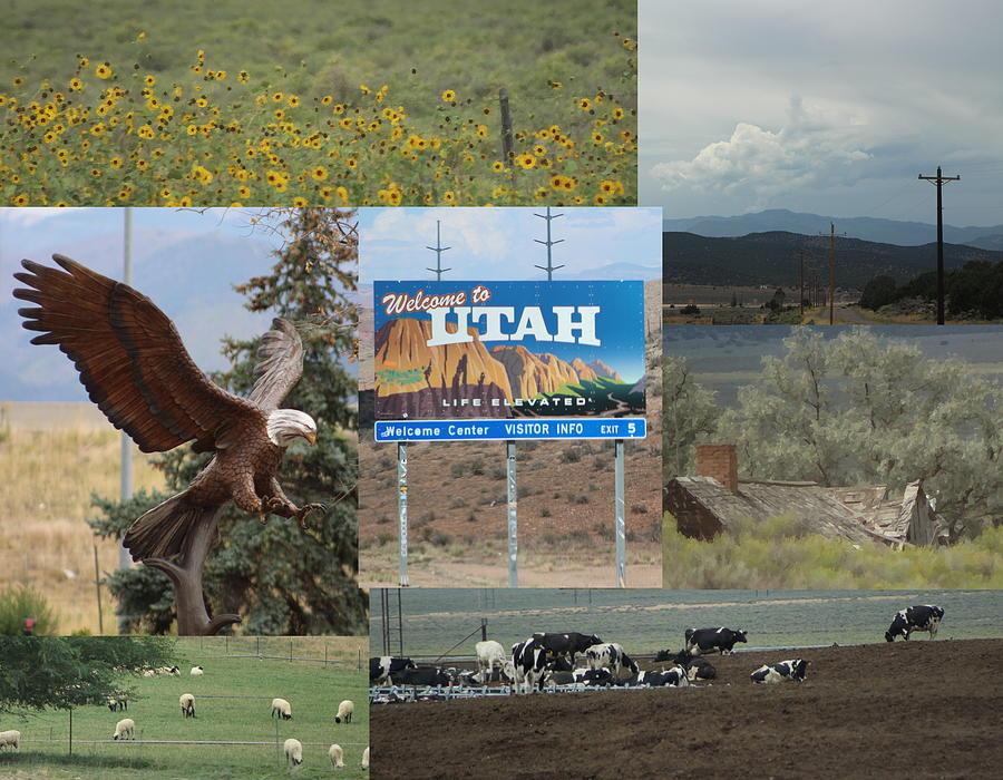 Utah Photograph - Road Trip Through Utah on Highway 15 by Colleen Cornelius