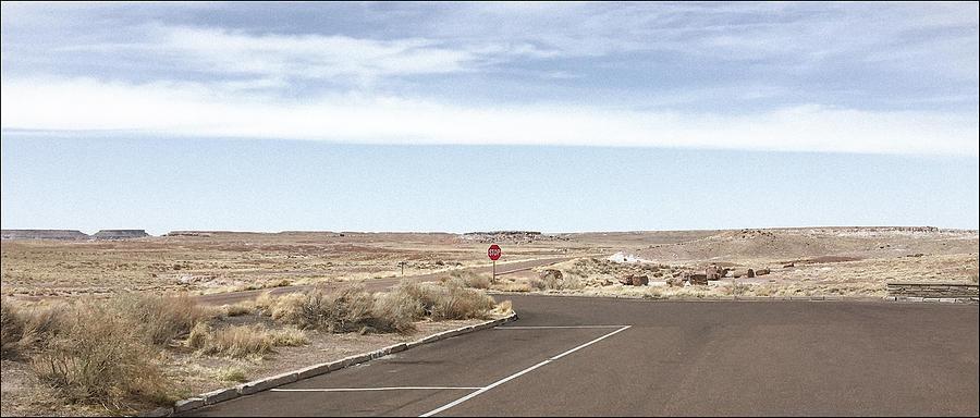 Roadside Landscape- Petrified Forest, AZ by Andy Romanoff