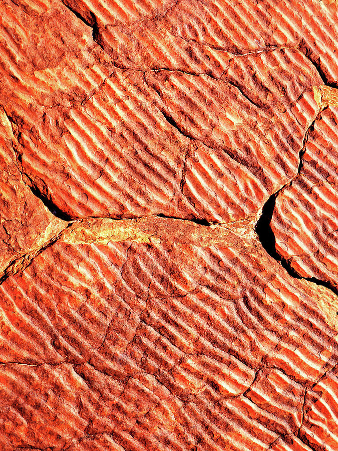 Rock Abstracts of Kings Canyon #3 by Lexa Harpell