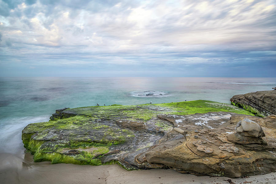 Rock and Sea Of Green by Joseph S Giacalone