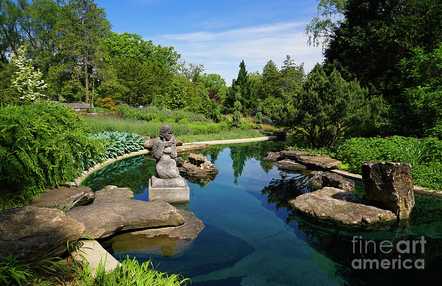 Rock Garden at the Water by Rachel Cohen