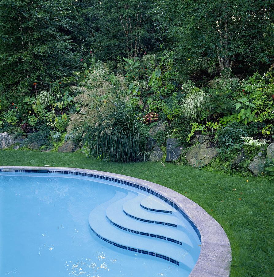 Rock Garden Near Swimming Pool by Richard Felber