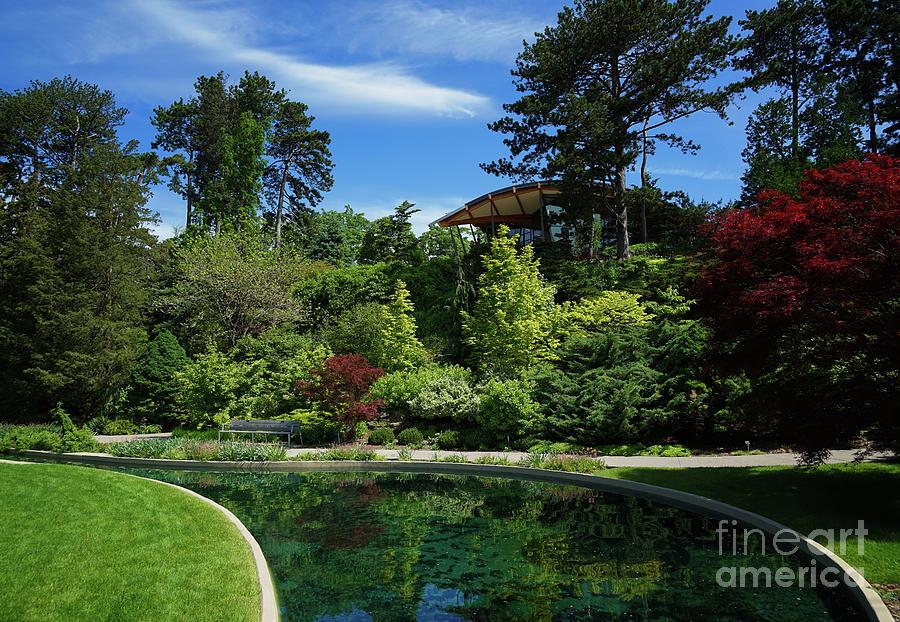 Rock Garden Spring by Rachel Cohen
