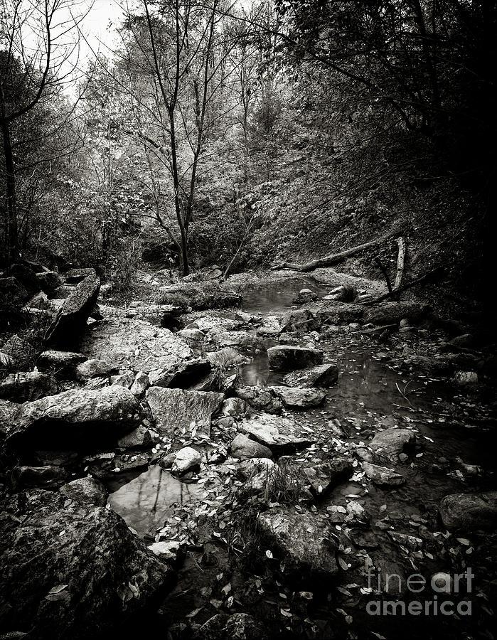 Rock Glen by RicharD Murphy
