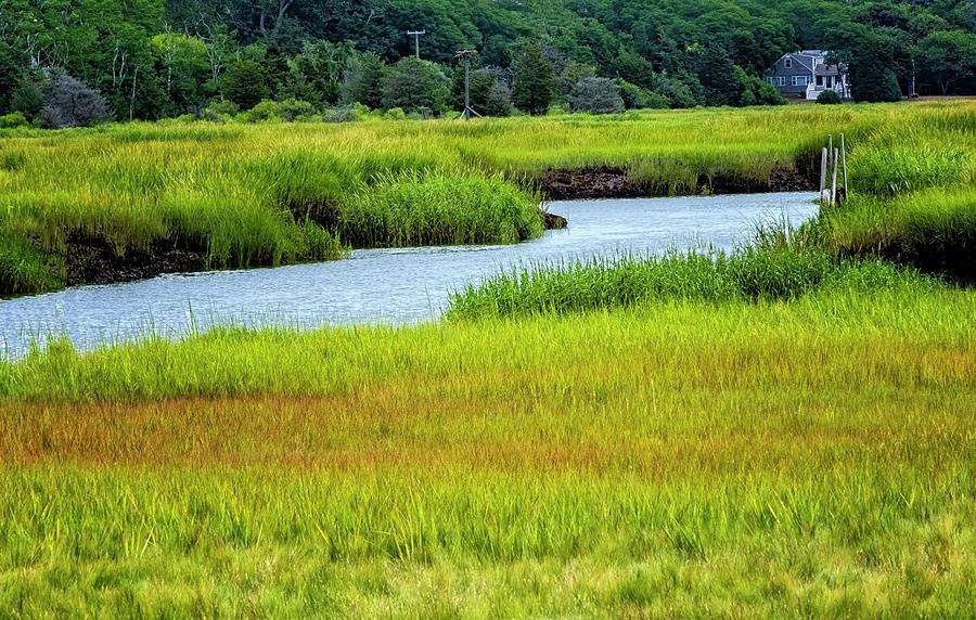 Rock Harbor Marsh by Tom Singleton