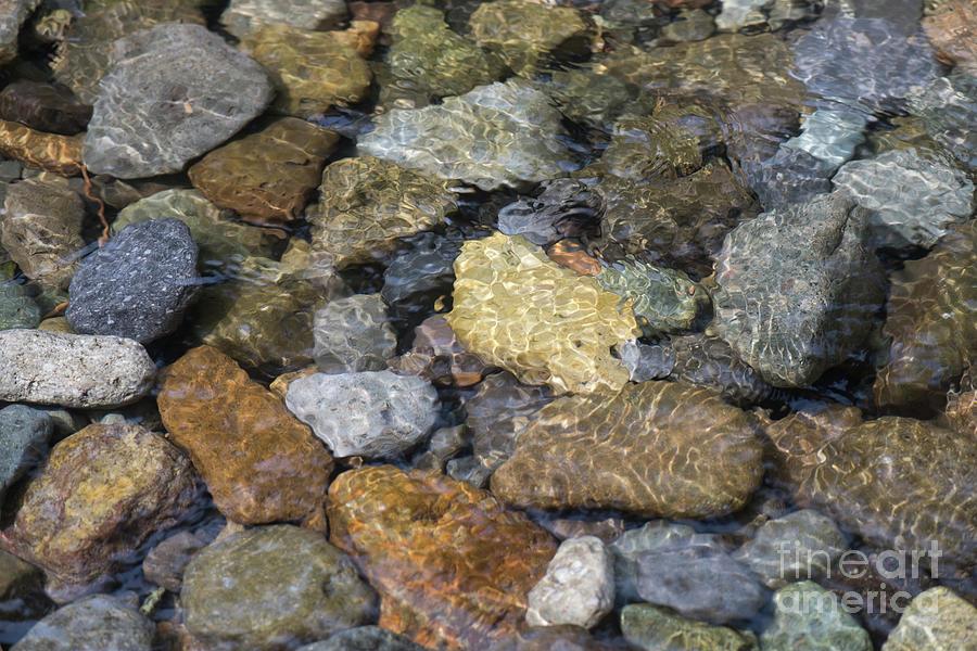 Rock in the river by Daniel Ryan
